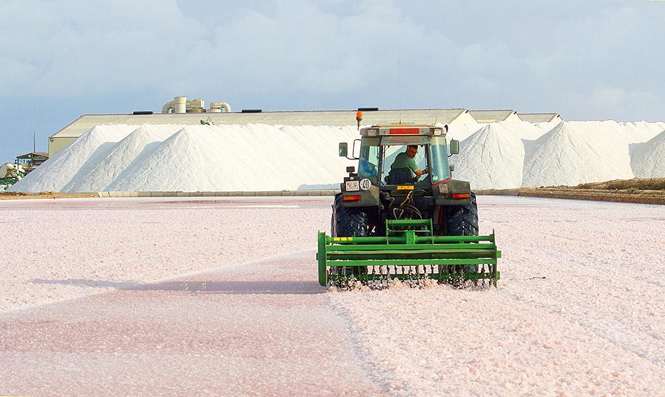 Maquinaria trabajando en la extracción de sal marina